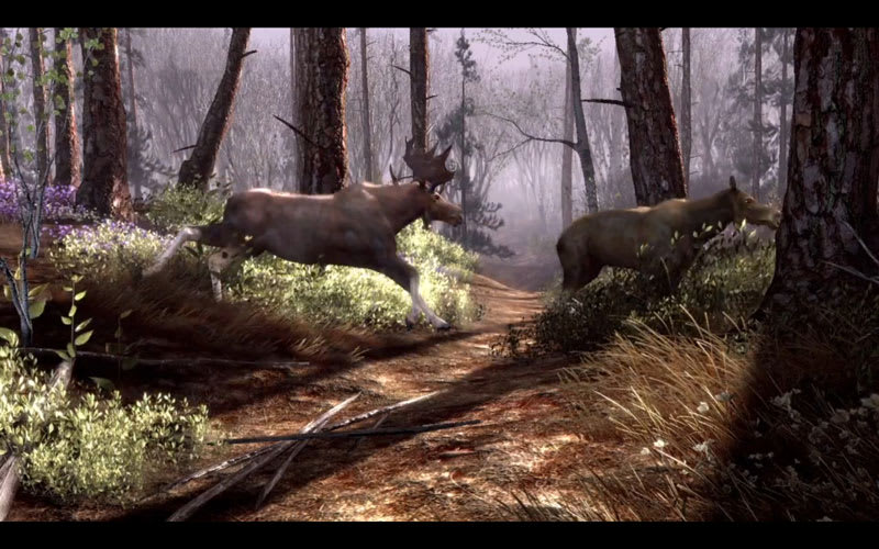 Big Buck HD Screenshot 1
