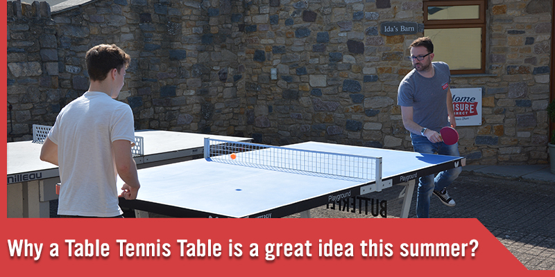Why table tennis table is a great idea.jpg