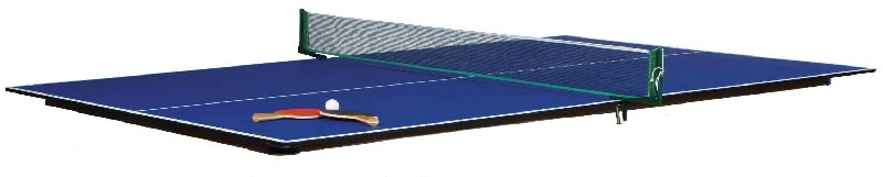 Eliminator Table Tennis Top